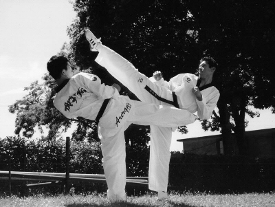 Two men in Martial arts poses